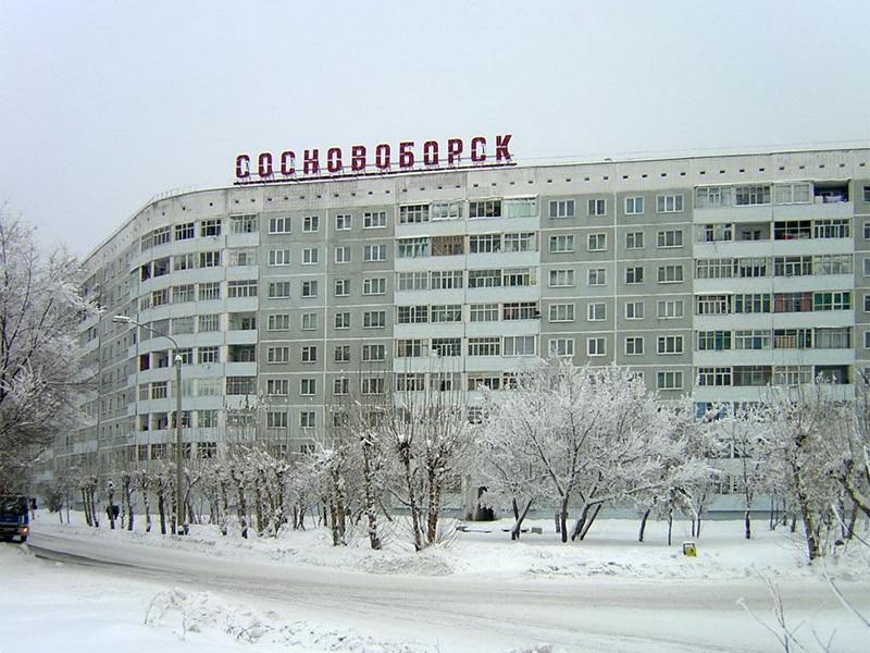 Размещение статей в Сосновоборск раскрутка продвижение сайта екатеринбург