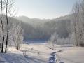 На Рождество в Сосновоборск придут морозы