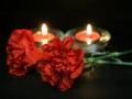 В Красноярском крае организован сбор средств для пострадавших при пожаре в Кемерове