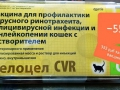 АКЦИЯ по льготной ВАКЦИНАЦИИ КОШЕК вакциной Фелоцел CVR (Zoetis)