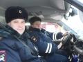Под Сосновоборском сотрудники ГИБДД спасли косулю