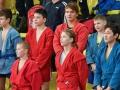 Всероссийский день самбо: среди команд края выиграла сборная Сосновоборска