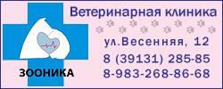 ветеринарная клиника азино
